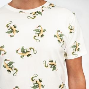 T shirt+short dragon